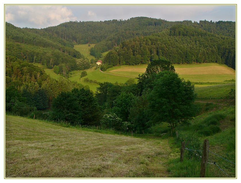 Schwarzwald-Idylle