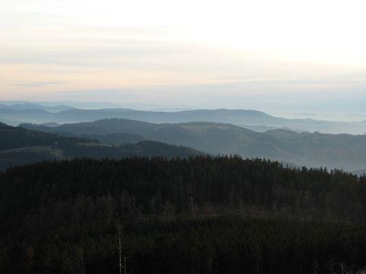 Schwarzwald in der Dämmerung