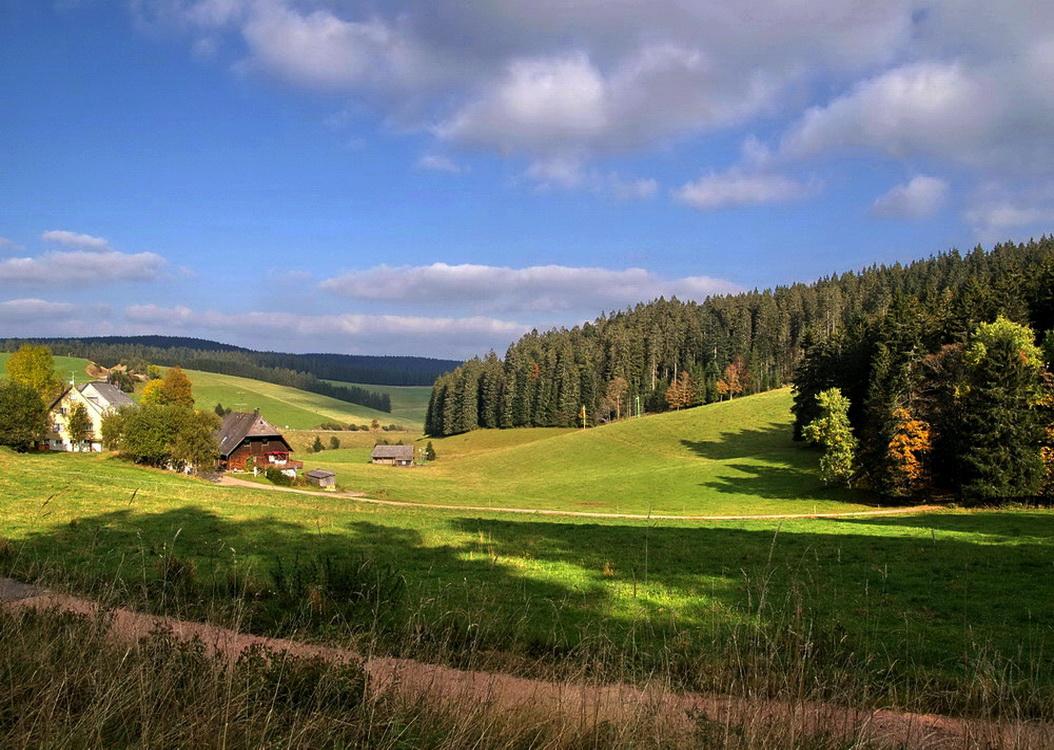 "Schwarzwald, ""Kalte Herberge"""