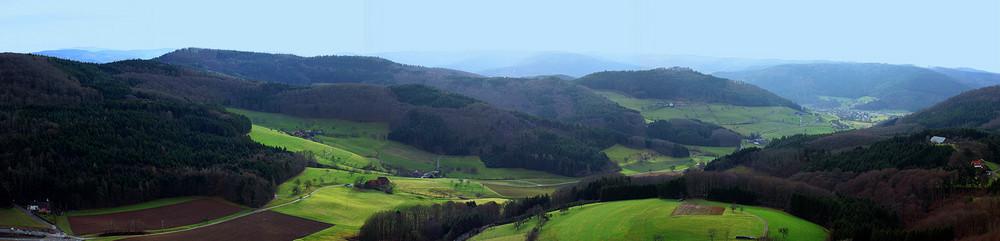 Schwarzwald mit milderen Hügeln
