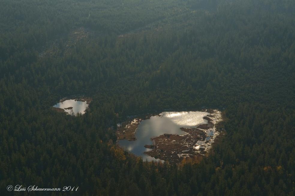 Schwarzwald von oben (11)