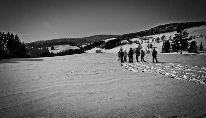 Schwarzwald Winter (I)