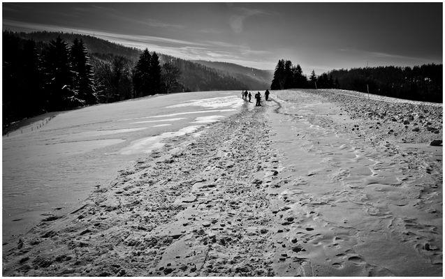 Schwarzwald Winter (III)