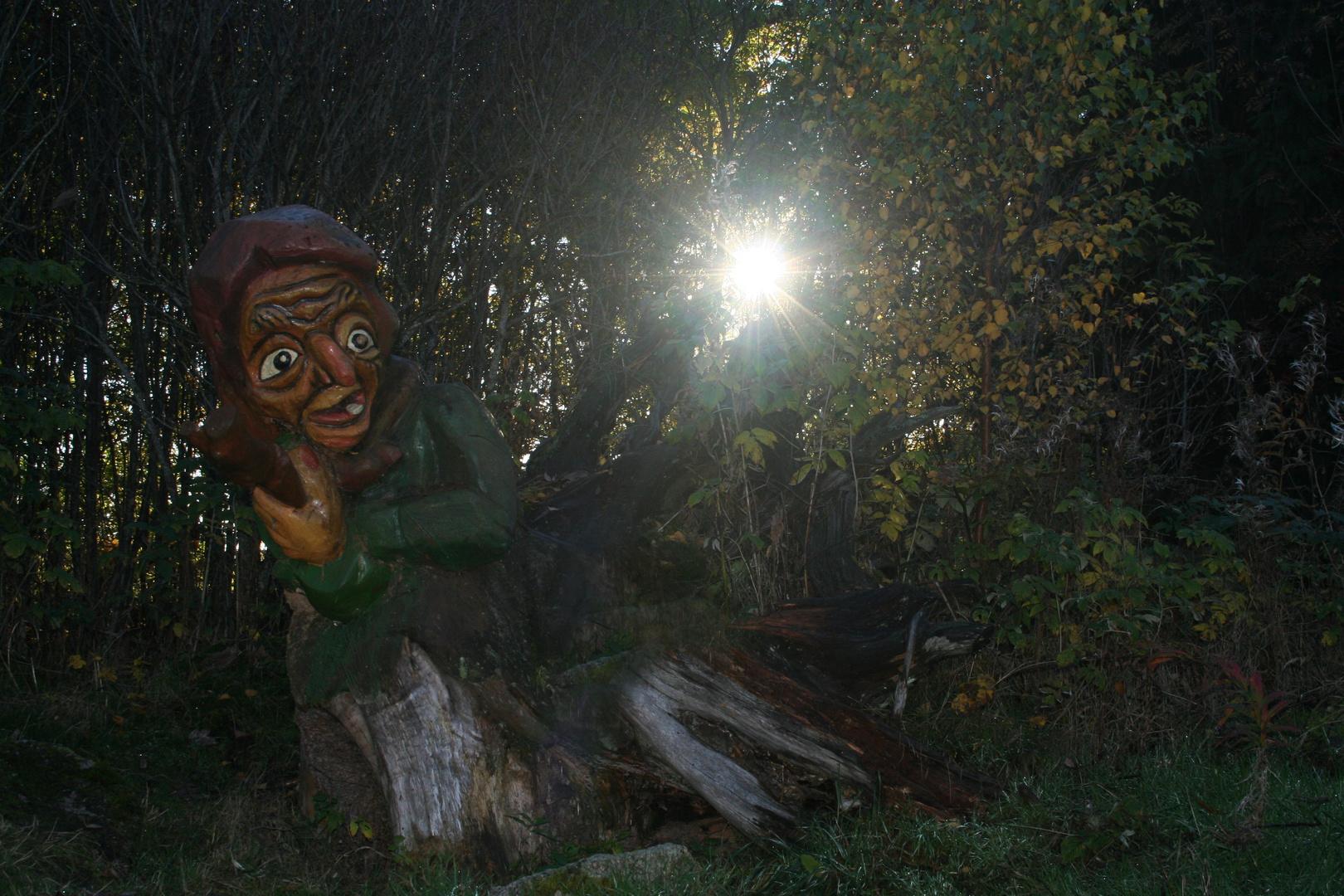 Schwarzwaldhexe...