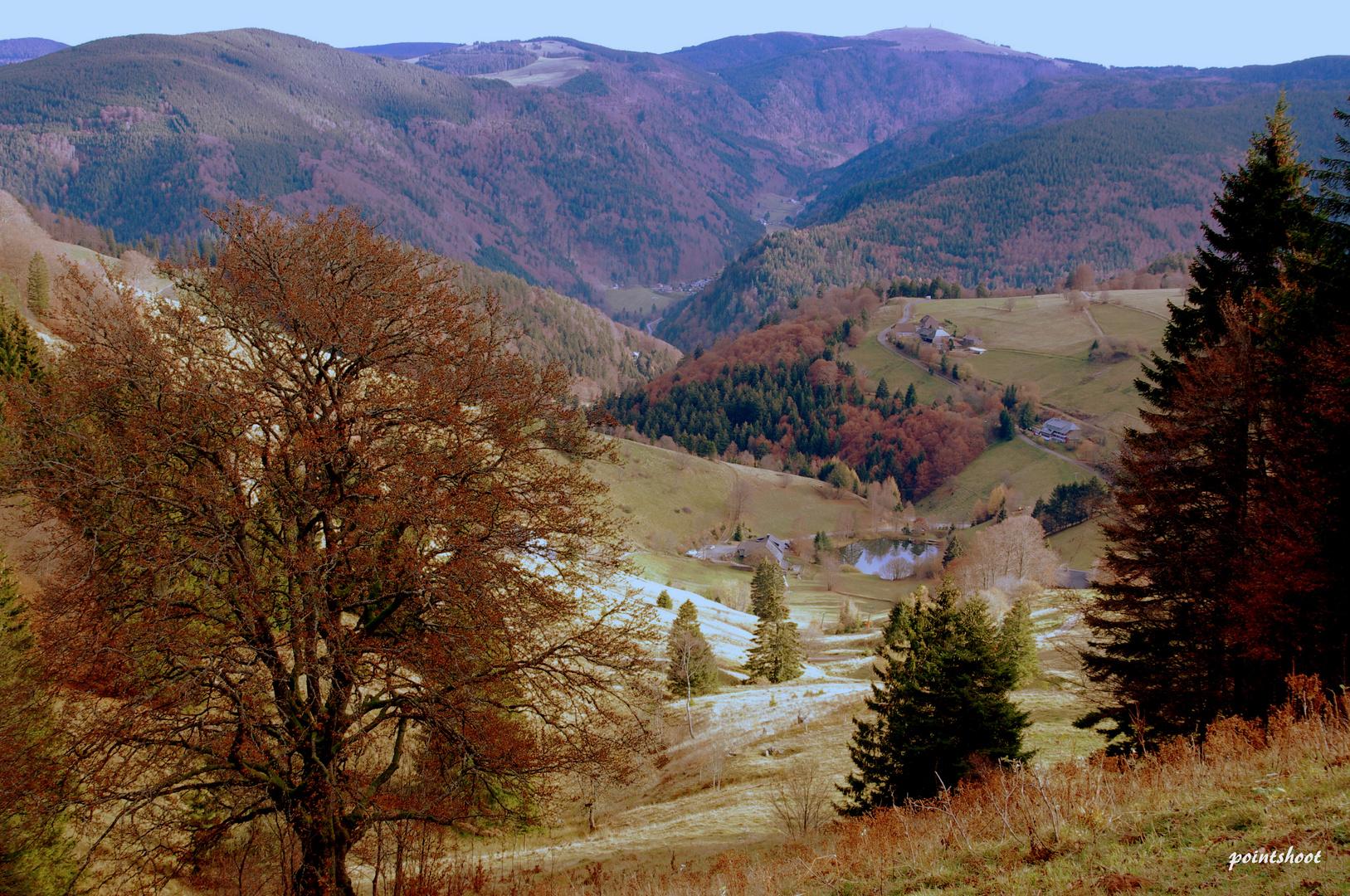 Schwarzwaldhöhen