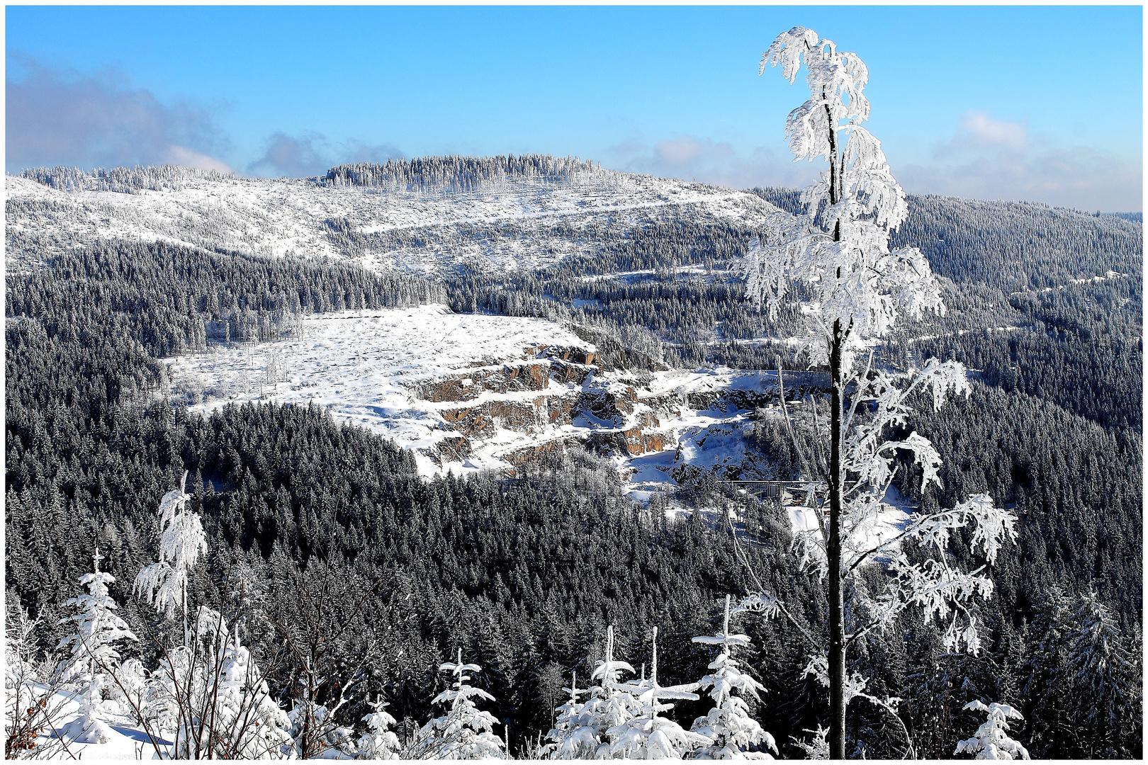 Schwarzwaldpanorama