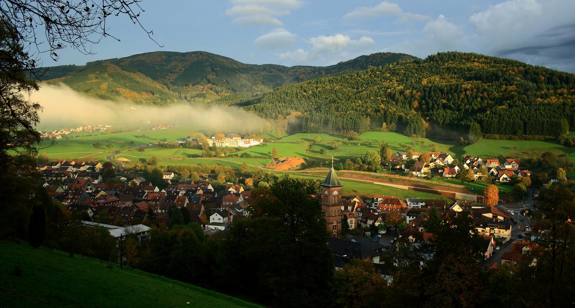 Schwarzwaldstädtchen