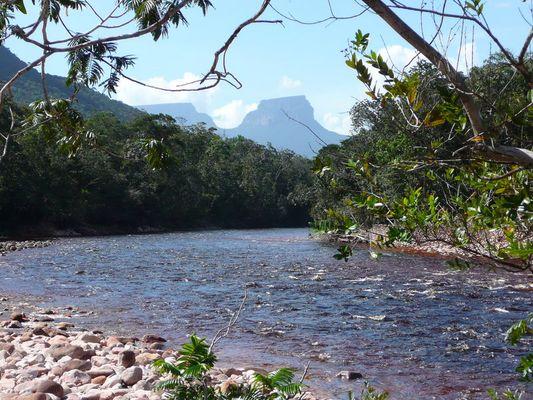 Schwarzwasserfluss am Auyan-Tepui