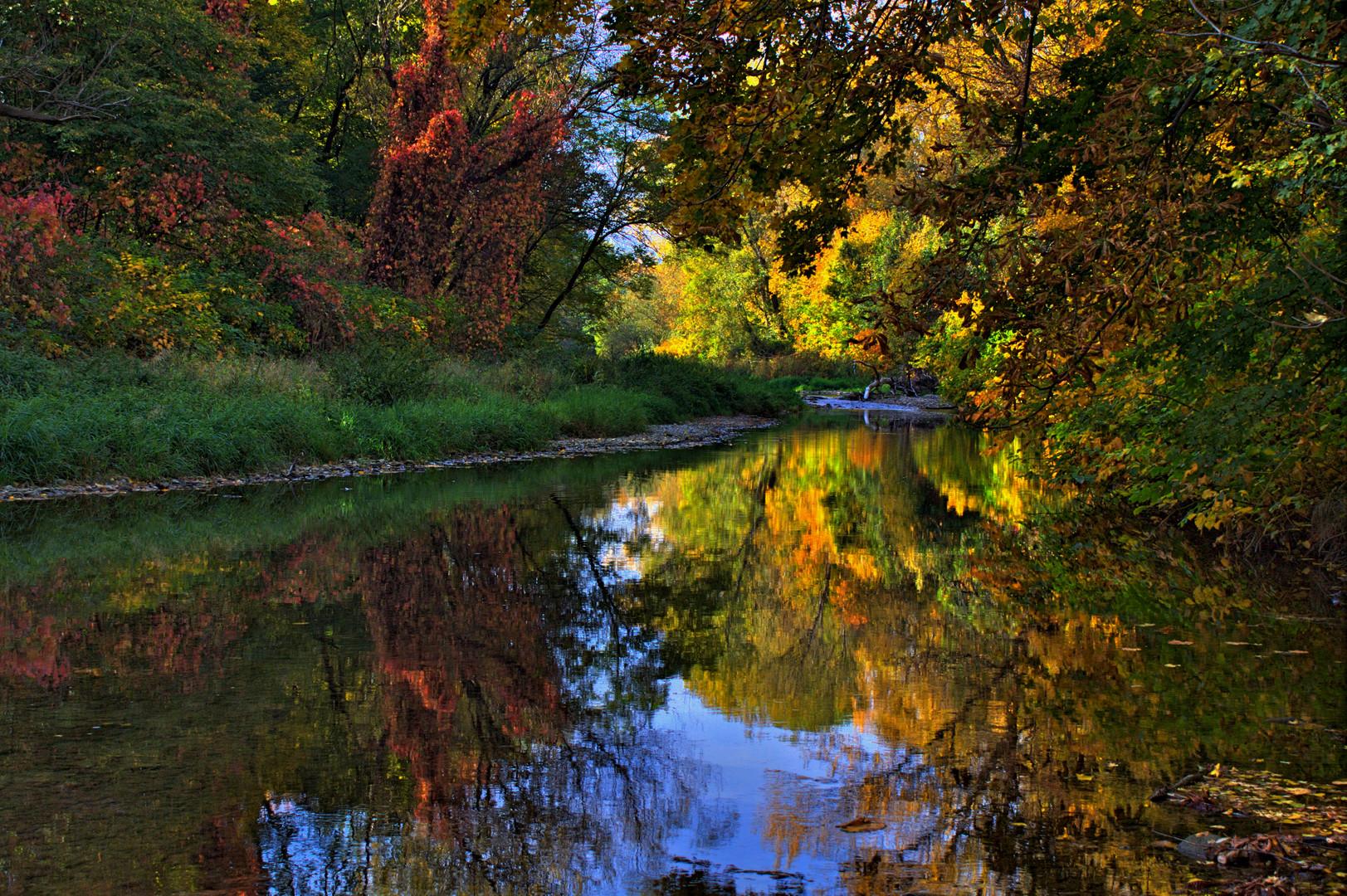 Schwechatau im Herbst 3 ( HDR )