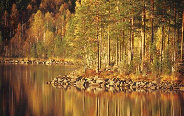Schwedischer Herbst