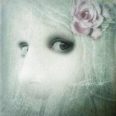 Schweigen und Schönheit