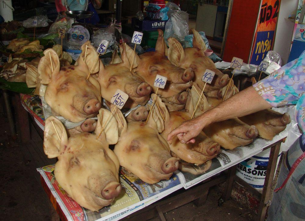 Schwein gehabt by kai-uwe fischer