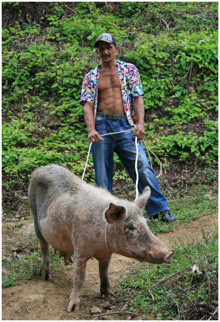 Schwein gehabt !!