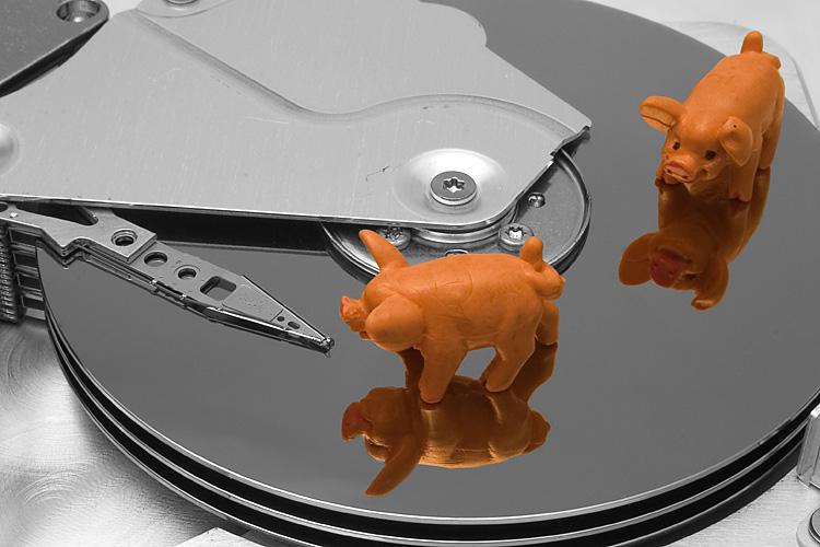 Schweinekram auf der Festplatte