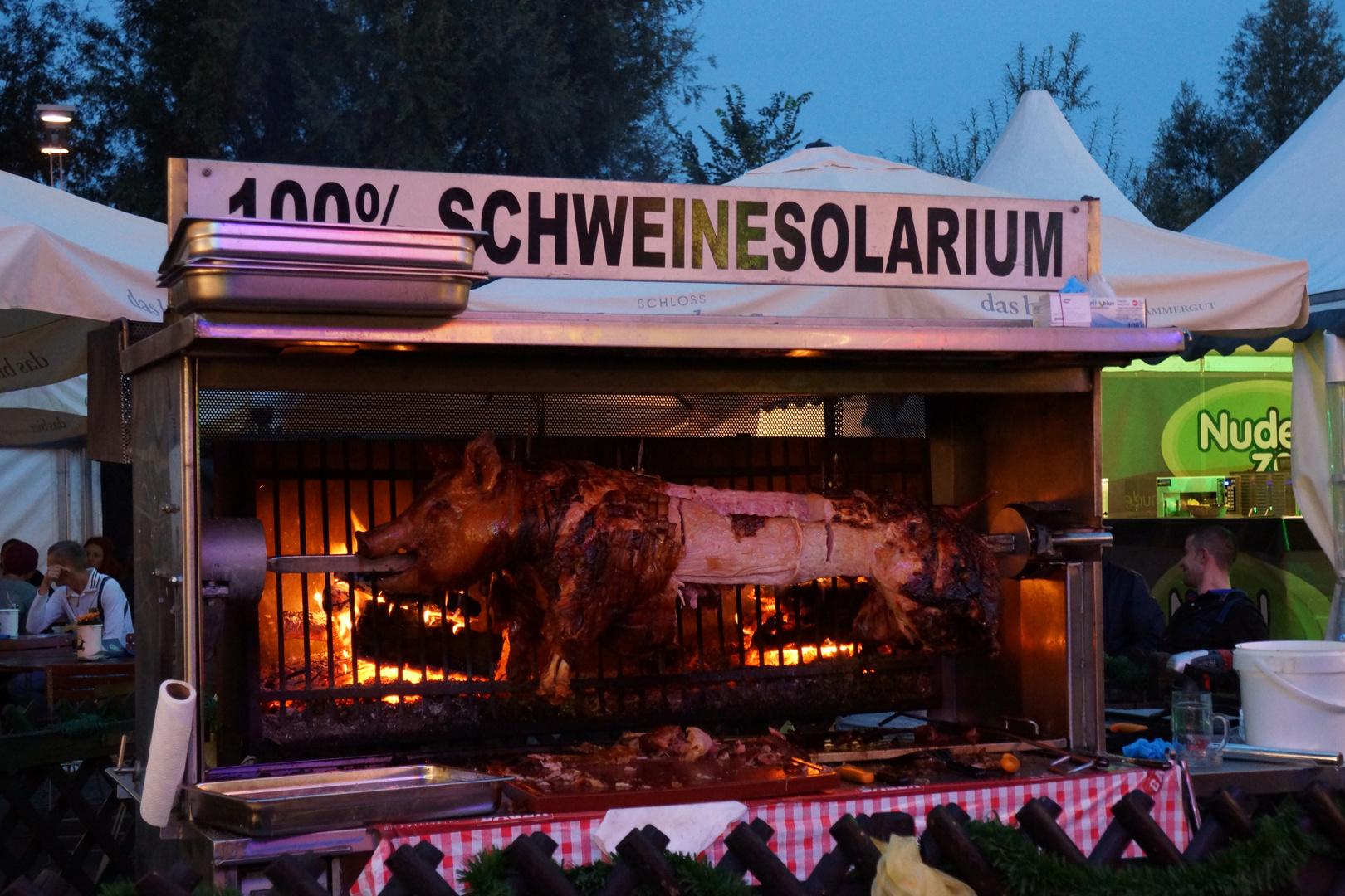Schweinesolarium