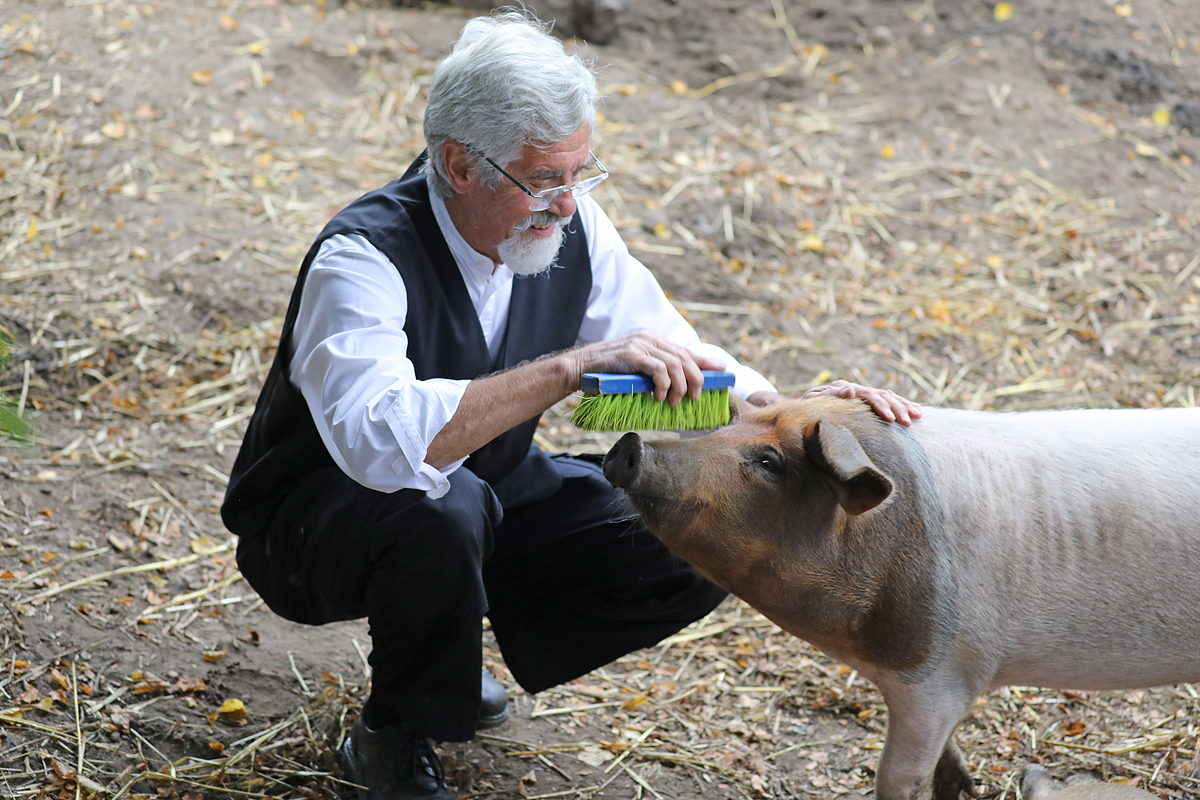 Schweinewellnes.....