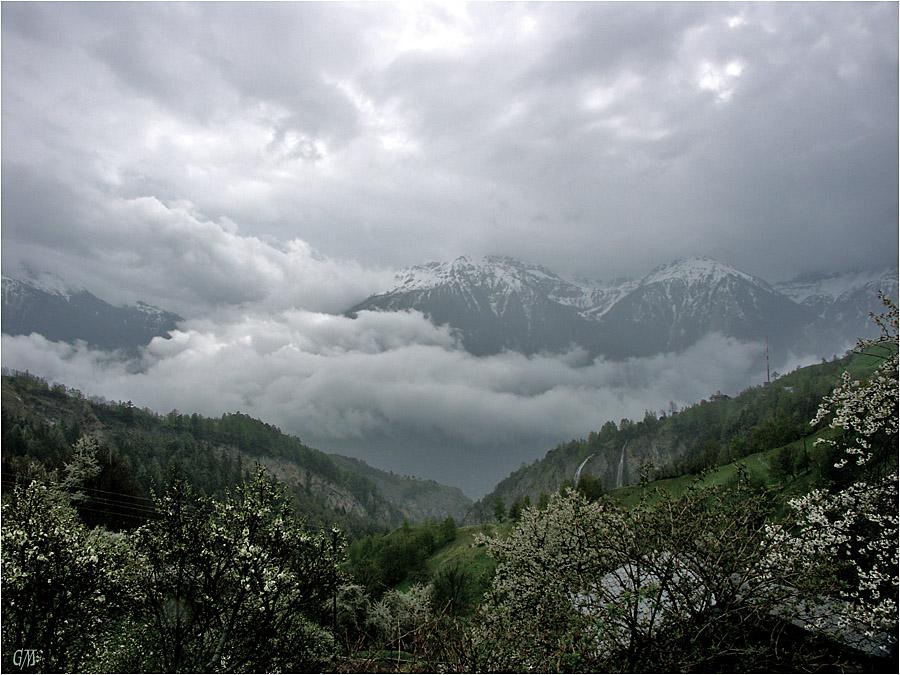 Schweizer Alpen 01