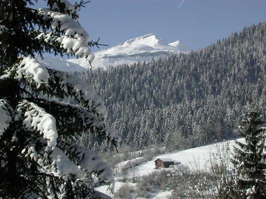Schweizer Berge im Schnee