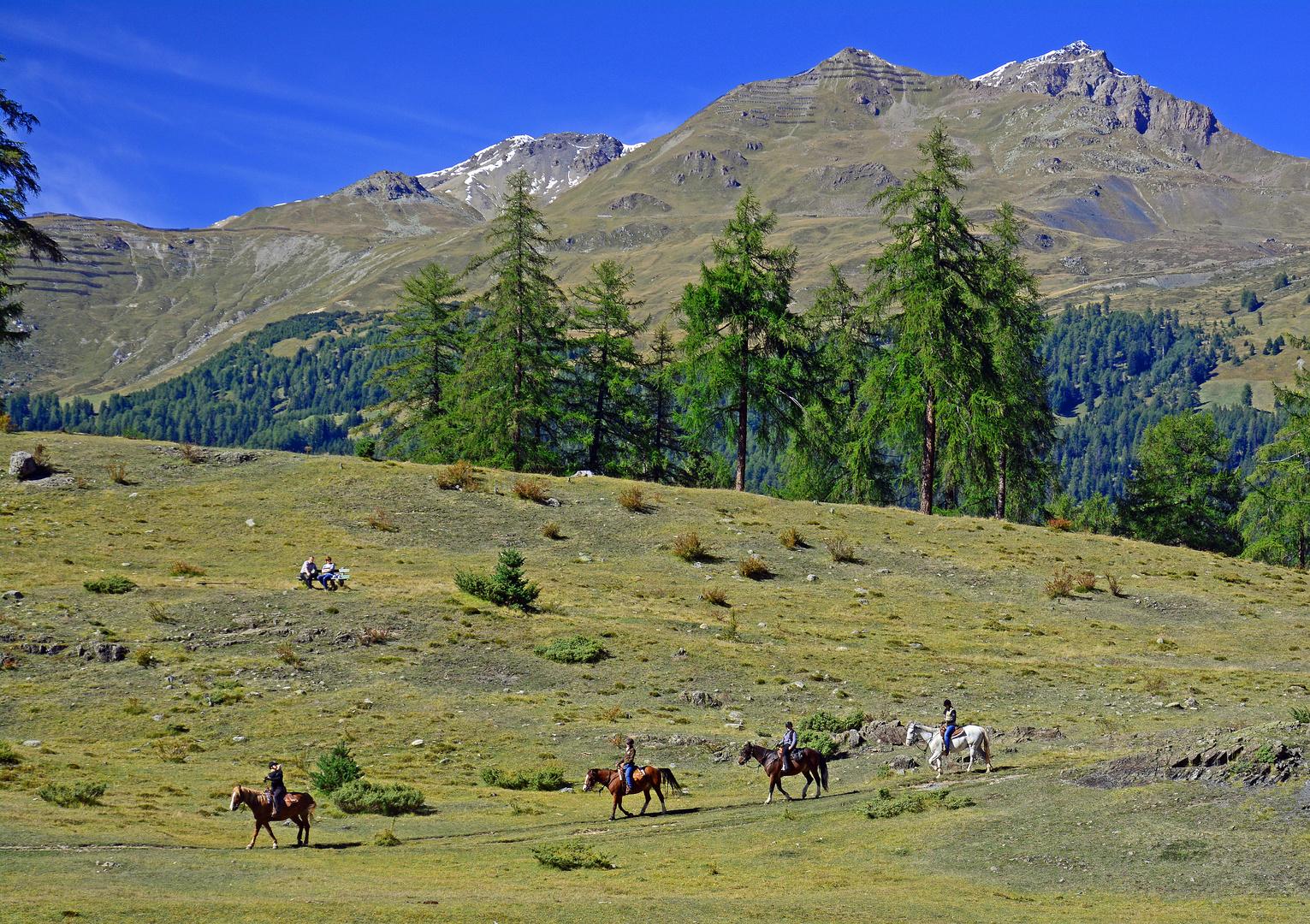Schweizer Landschaften (27)