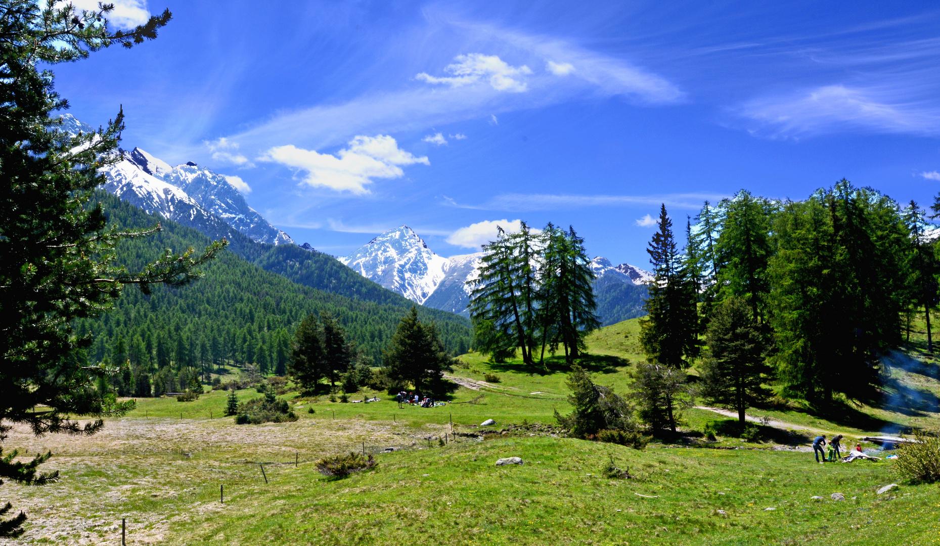 Schweizer Landschaften (70)