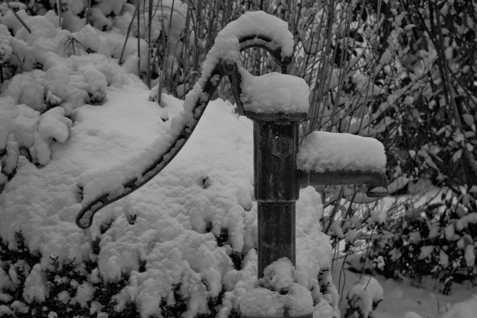 Schwengel im Schnee