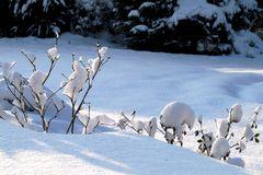 Schwer wiegt der Schnee...