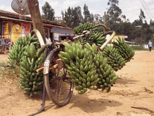 Schwertransport in Mbarara
