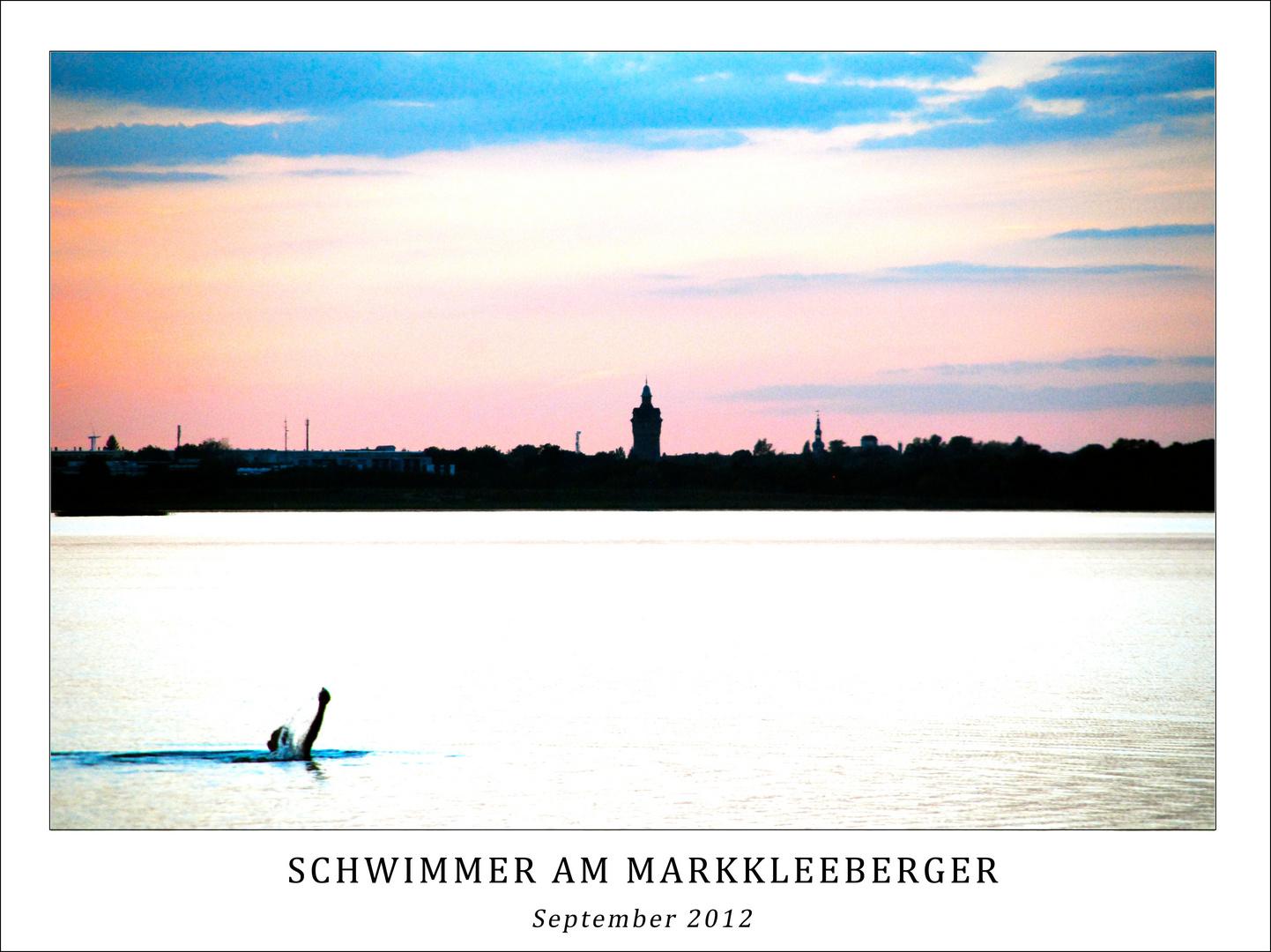 Schwimmer am Neuseenland