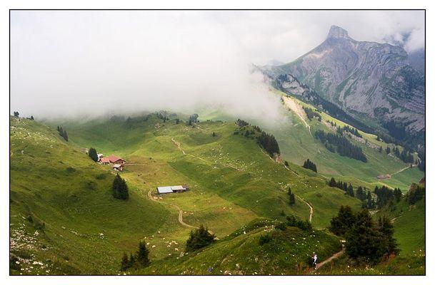 Schynige Platte, Schweiz