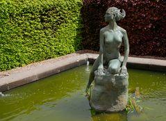 Scone Garden - Arethusa