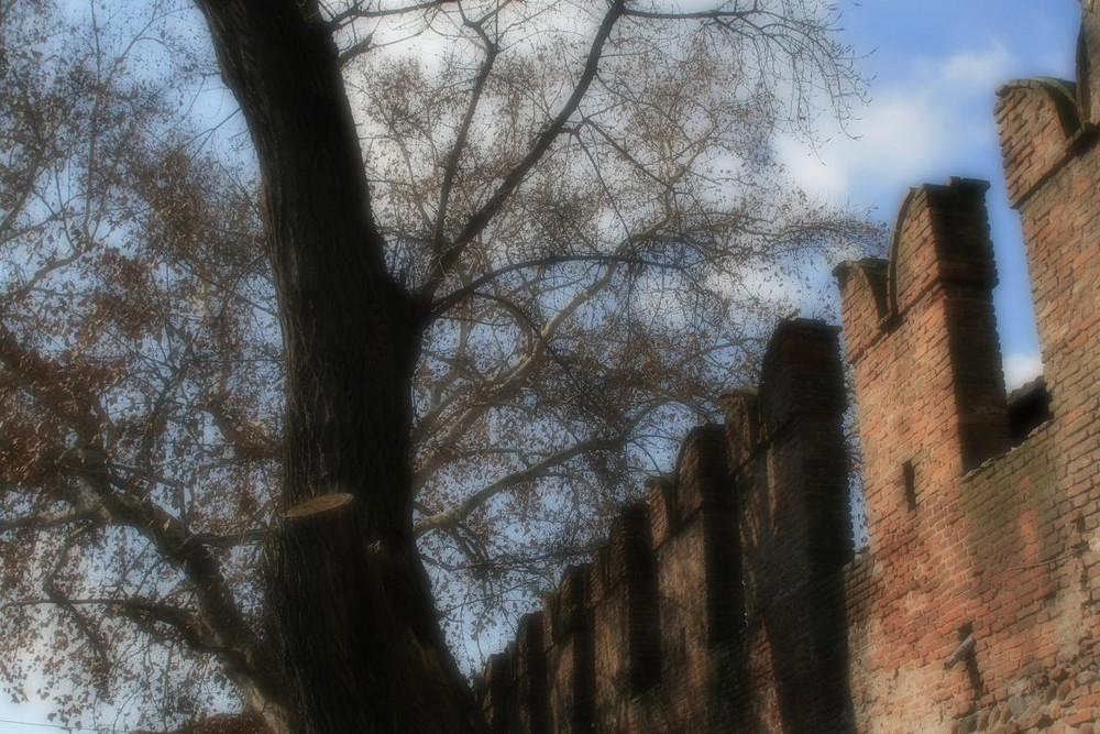 Scorcio di Castelvecchio, Verona