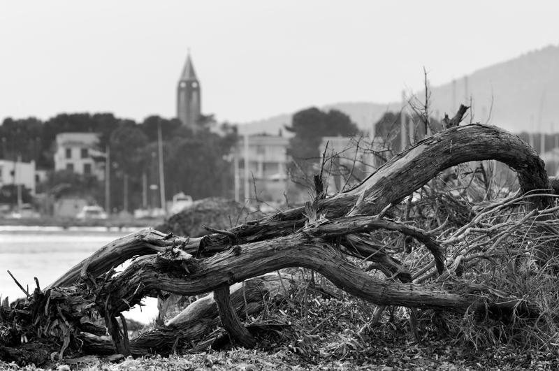 Scorcio di Fertilia dalla spiaggia