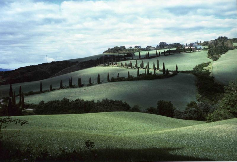 Scorcio Val d'Orcia