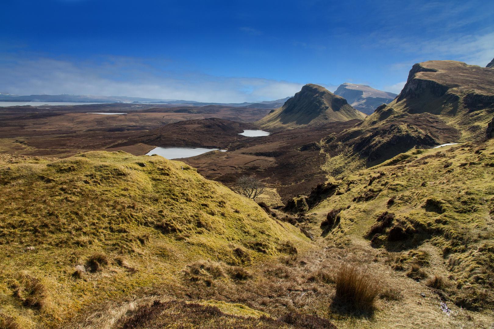 Scotland 2013 -II