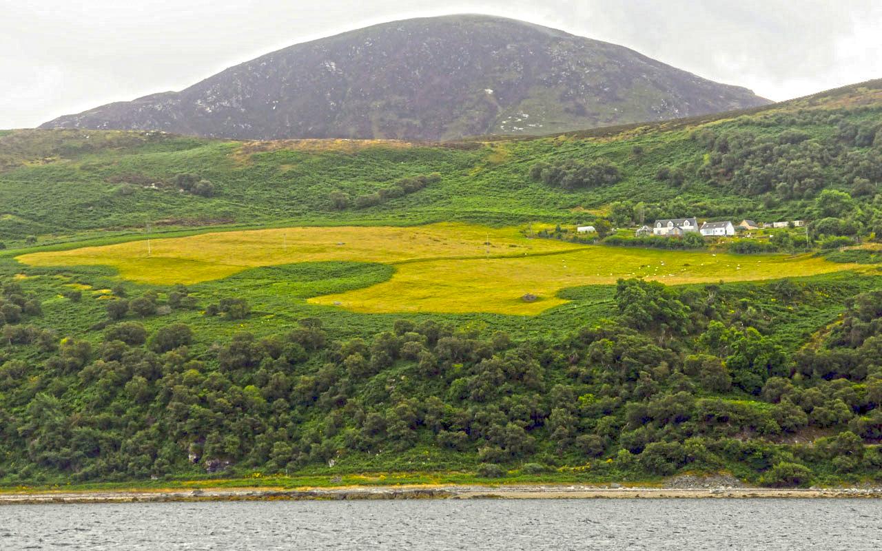 Scottish Green