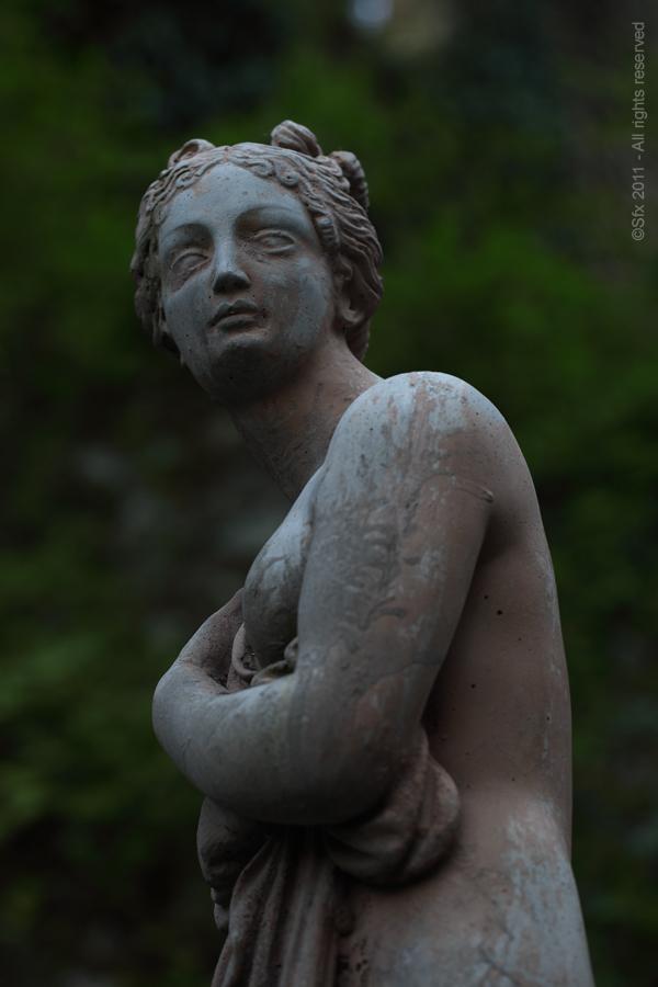 Sculpt (B)