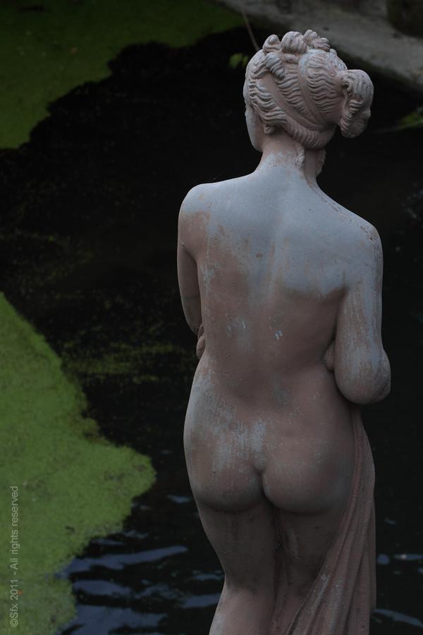 Sculpt (D)