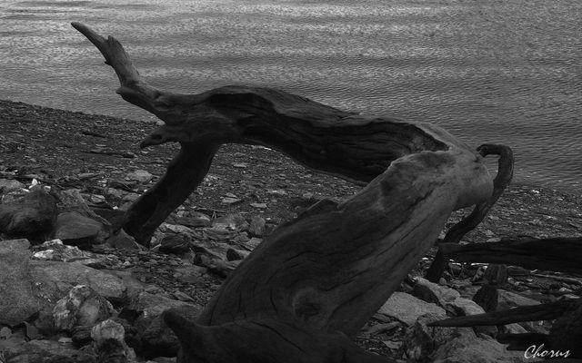 "sculpture "" Dame Nature"""