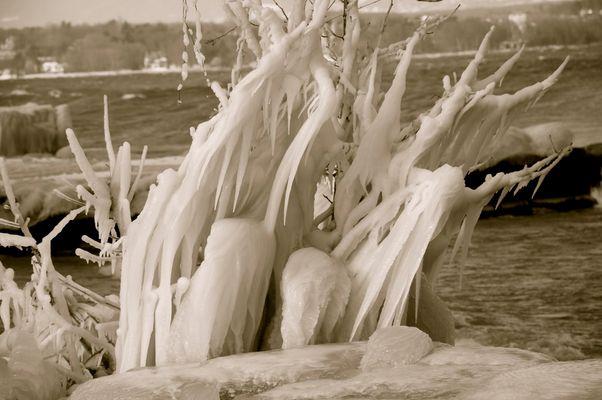 sculpture de glace au bord du Leman