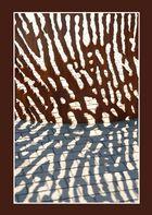 Sculpture shadow
