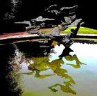 Sculpture sur l'eau