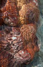 Sculptures sédimentaires