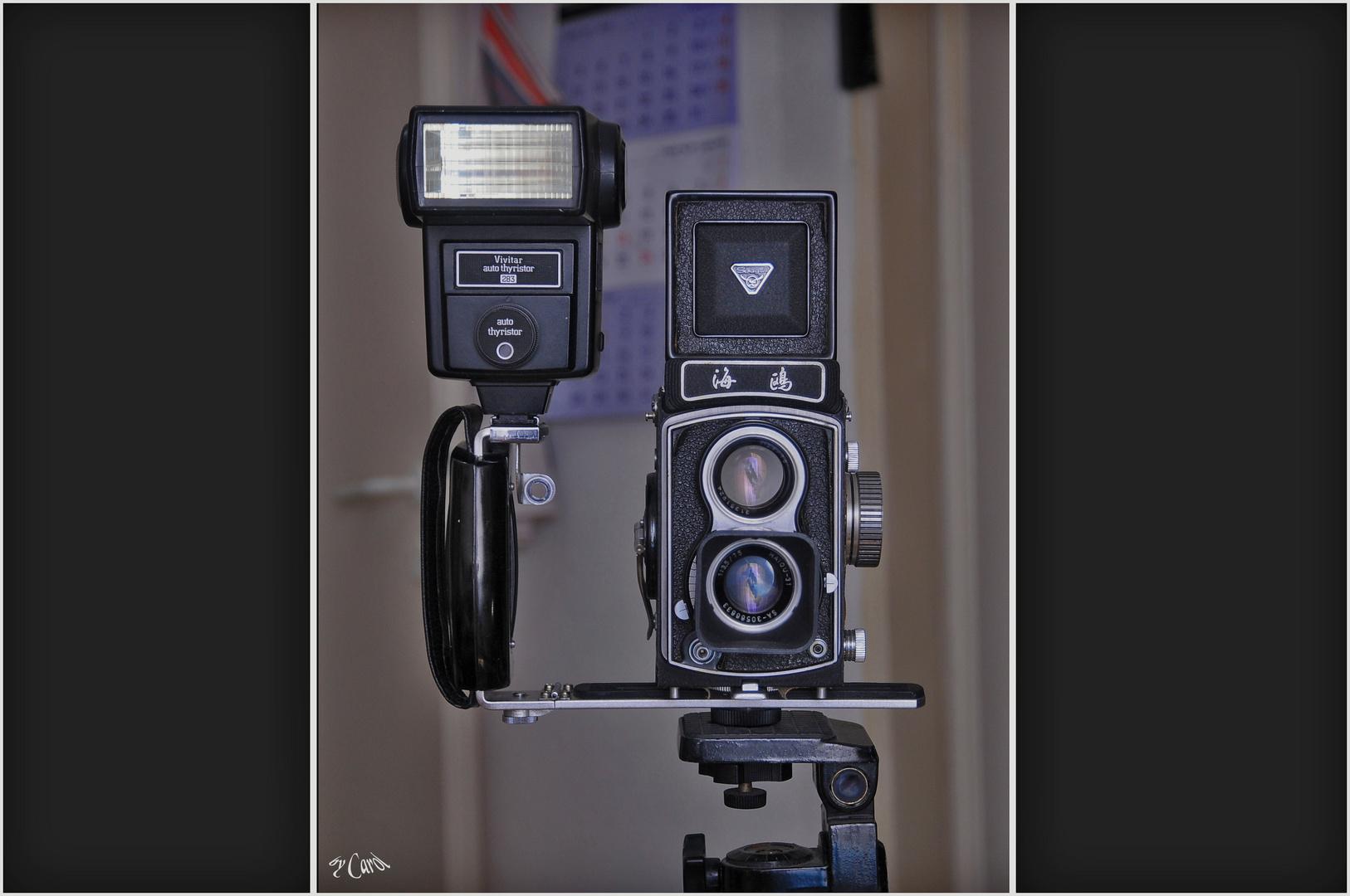 Seagull 4A von meinem alten Kameras (voll funktionsfähig)