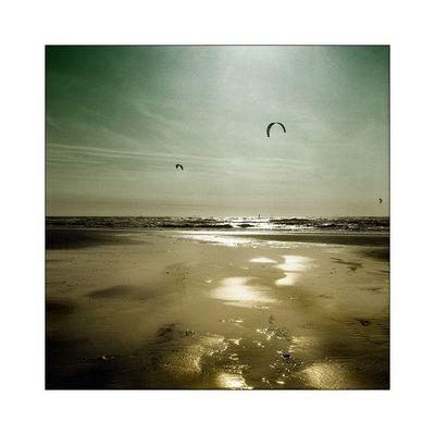 SEA_lhouettes #9