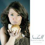 ~ seashell ~