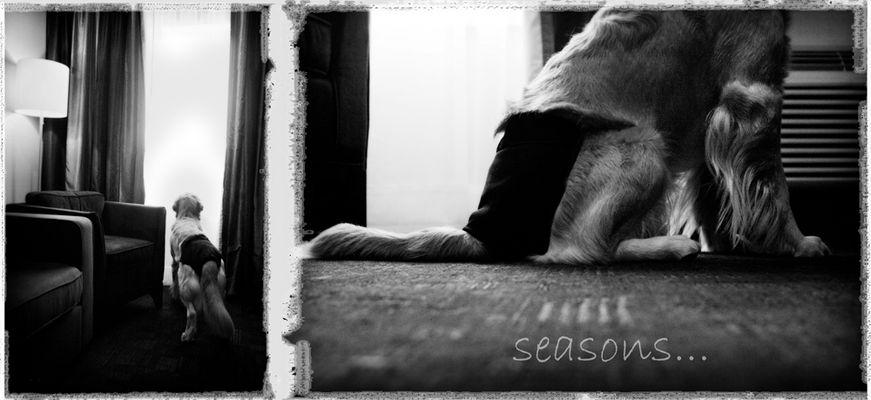 seasons...