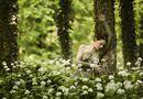 secret of a forest von Uwe Schmida