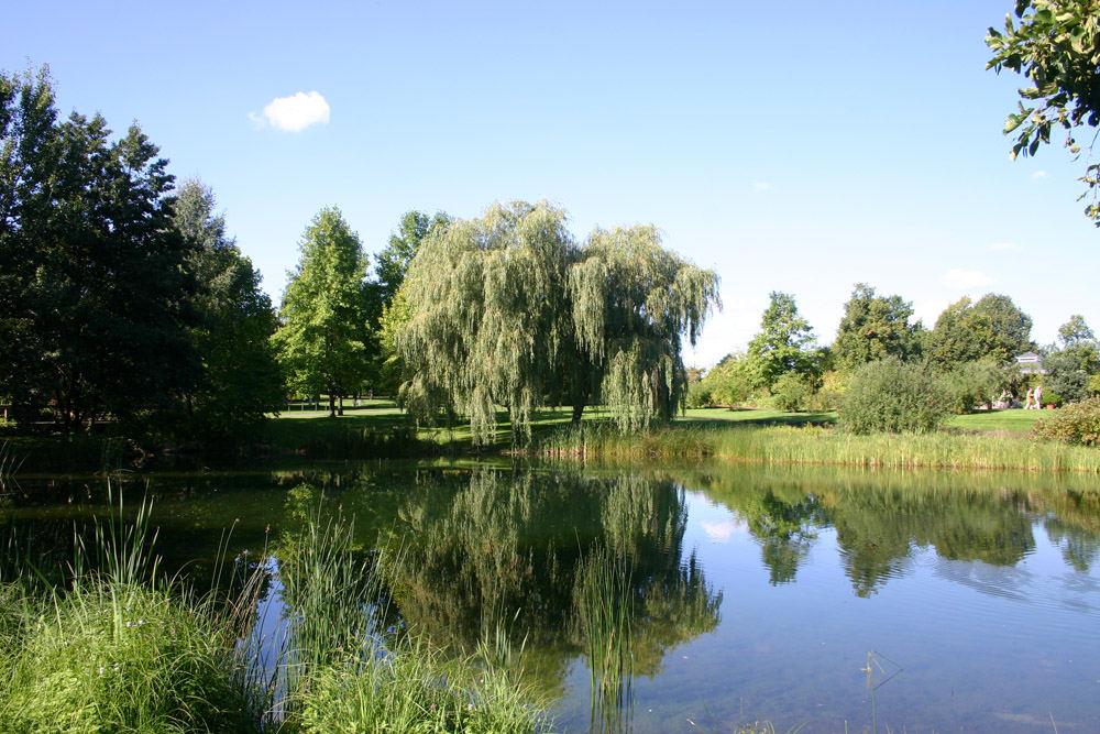 See auf der Berliner Buga