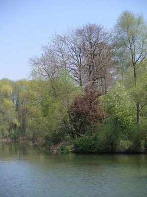See bei Neckartailfingen
