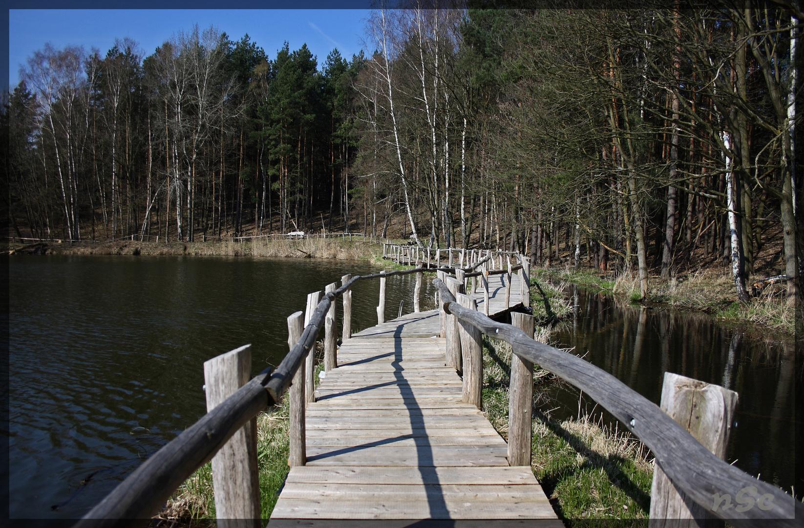 See der Freundschaft - NSG Königsbrücker Heide